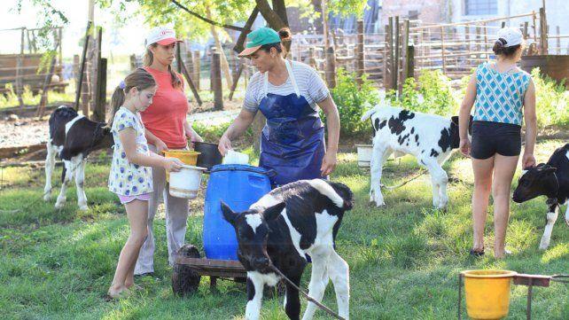 Tambo. Una actividad que genera empleo familiar en abundancia en poca superficie de tierra.