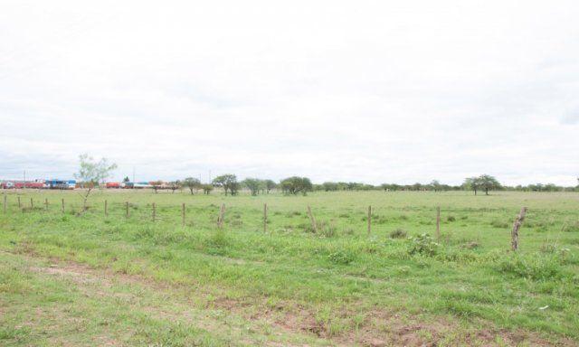 El municipio de Chajarí planea vender casi 200 lotes de tierra para viviendas
