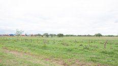 el municipio de chajari planea vender casi 200 lotes de tierra para viviendas
