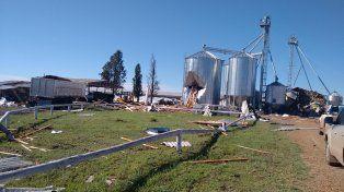 Fuerte temporal de viento destrozó un criadero de cerdos