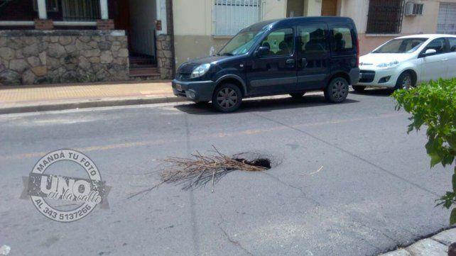 Se secó el arreglo floral en el asfalto hundido de calle Bavio