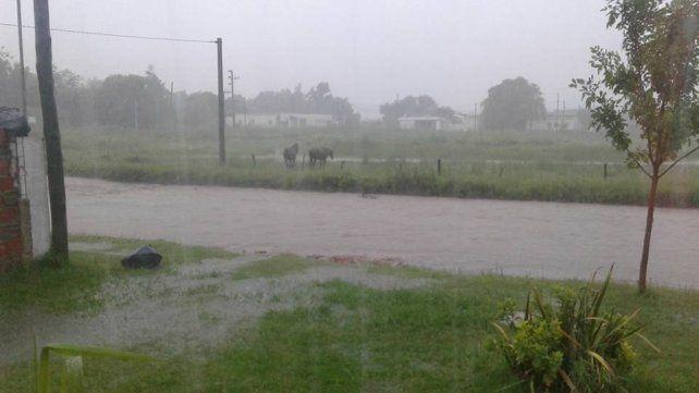 Seguí, otra de las ciudades entrerrianas afectadas por el temporal