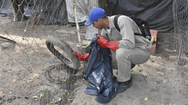 La prevención del dengue como medida central