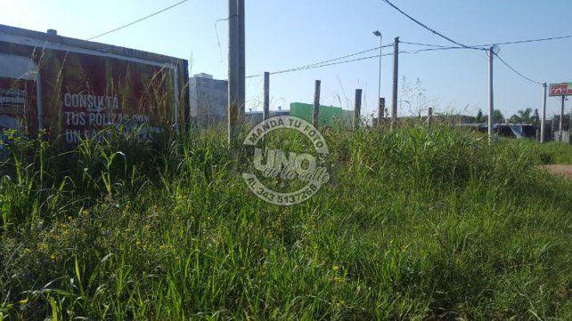 Denuncian desidia municipal a metros de la Unidad Sur