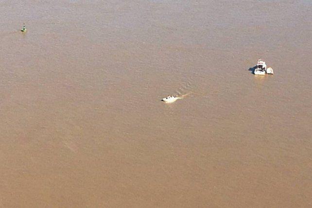 Continúa un intenso rastrillaje para dar con los desaparecidos en el río Paraná
