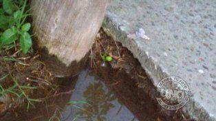 Un mes sin agua es inhumano, el desesperado pedido de una vecina