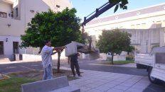 Mobiliario. Desde la comuna ya construyeron más de 300 bancos para las plazas de la ciudad.