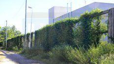 Paredón. Ventanas y vegetación se incorporaron tras violar el Código Urbano. El sector está vigilado e iluminado.