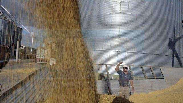Avanzó un 88 por ciento la cosecha de la soja en Entre Ríos