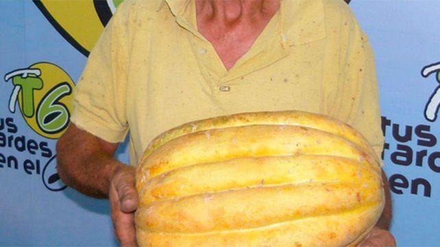 Un crespense cosechó un melón de más de siete kilos