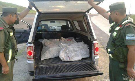 Gendarmería incautó casi 250 kilos de marihuana en la ruta nacional 14