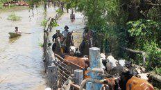 brindaran asistencia financiera a los productores rurales que sufrieron inundaciones