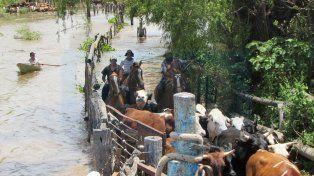 Brindarán asistencia financiera a los productores rurales que sufrieron inundaciones