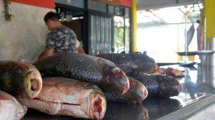 El kilo de sábalo vale 45 pesos en Puerto Sánchez. FotoUNOMateo Oviedo.