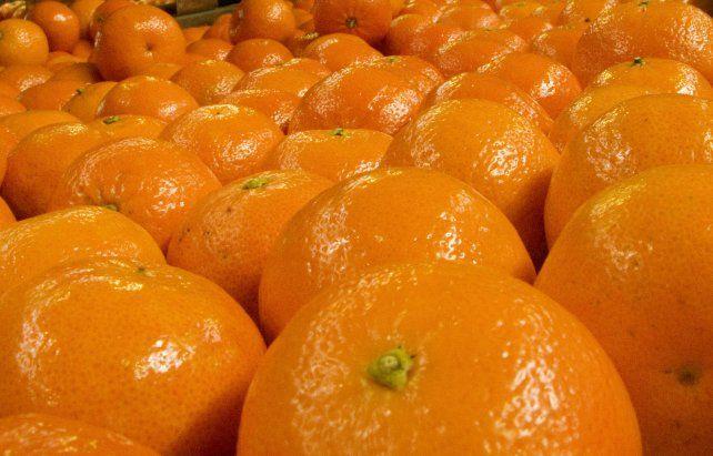 La mandarina mantiene diferencias alarmantes entre el precio de origen y el de góndola