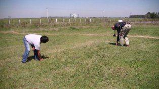 Ahora encontraron extrañas marcas en un sembradío santiagueño