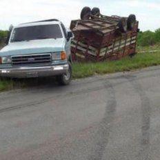 Volcó una camioneta cargada con terneros en la ruta 127