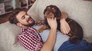 La ciencia confirmó que humanos y perros comparten genes