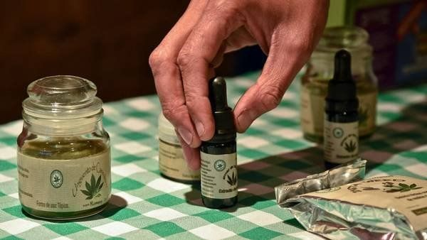 Ya funciona el primer local de venta de aceite de cannabis en el país