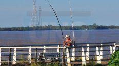 Algo trae. Como cada tarde, varios pescadores intentaban ayer sacar algo desde la Costanera.