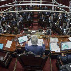 El Senado aprobó con cambios el proyecto que limita excarcelaciones