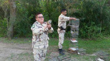 liberaron aves autoctonas y secuestraron elementos de caza