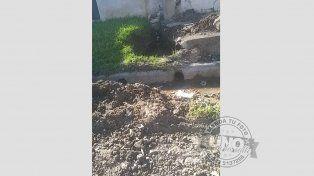 Litros y litros de agua potable desperdiciados