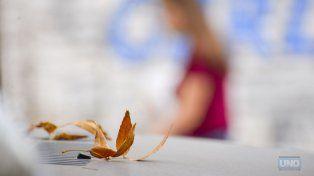 Una muestra del otoño. FotoUNOMateo Oviedo.