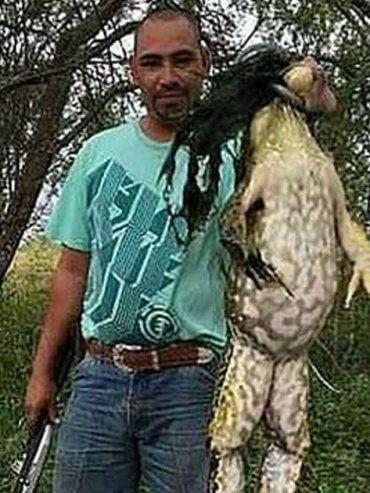 Cazador exhibió una rana toro gigante
