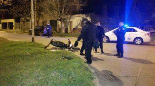 Un motociclista resultó herido en un accidente en Paraná