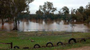 El río Uruguay crece y complica ciudades con unos 650 evacuados