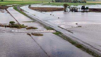Las lluvias afectaron más de tres millones de hectáreas con pérdidas de $800 millones
