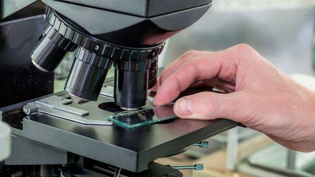 Desarrollan un medicamento para la tuberculosis en una universidad argentina