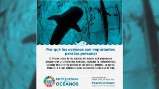 La UNESCO distinguió a la Argentina por su contribución en la investigación marina