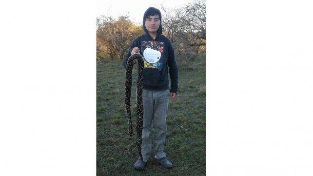 Hallaron una yarará de casi dos metros en una chacra