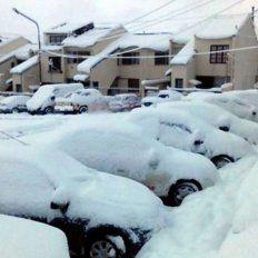 Chubut sufre la nevada más fuerte de los últimos 50 años, según informó su gobernador.