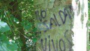 Restos de la casona embrujada de Tezanos Pinto.  Foto archivo UNO/Juan Ignacio Pereira.