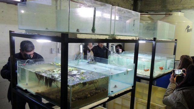 Espacios. La inversión estuvo a cargo del gobierno provincial y del municipio de Diamante.