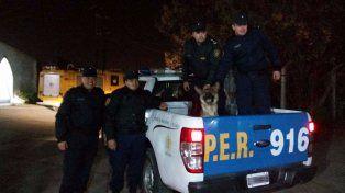 Recuperaron el perro bombero que había sido robado