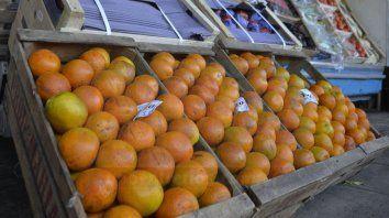 por primera vez en ocho anos, argentina exporto naranjas a brasil