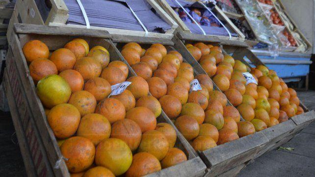 Por primera vez en ocho años, Argentina exportó naranjas a Brasil