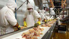 por la crisis, frigorificos avicolas reduciran un 20% su produccion
