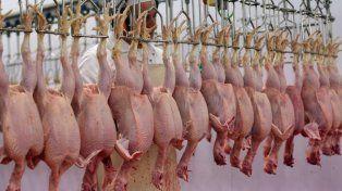 Entre Ríos elevará un reclamo a Nación por la crisis de la cadena avícola