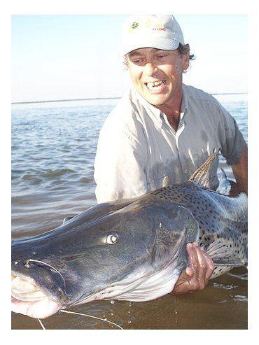 Los pescadores deberán realizar la firma virtual para tener una respuesta de los políticos.