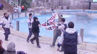 Proteccionistas protestaron durante el show de la orca en Mundo Marino