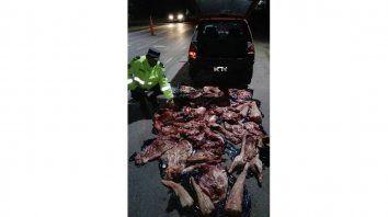 secuestraron mas de 70 kilos de animales silvestres faenados en la paz