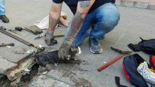 Bomberos rescataron un gatito atrapado en un caño de desagüe