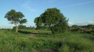 El terreno está ubicado en calle Gobernador Tibiletti al 3.700