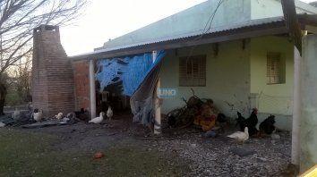 En el centro de Salud deambulan patos, gallos y gallinas.