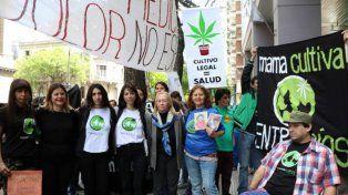 Cannabis Medicinal: Preocupa la falta de reglamentación de la Ley
